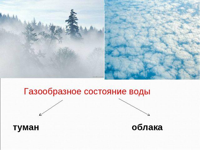 Газообразное состояние воды туман облака