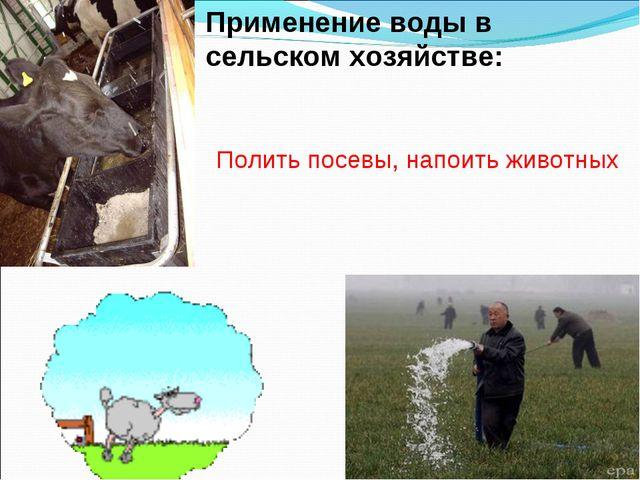 Применение воды в сельском хозяйстве: Полить посевы, напоить животных