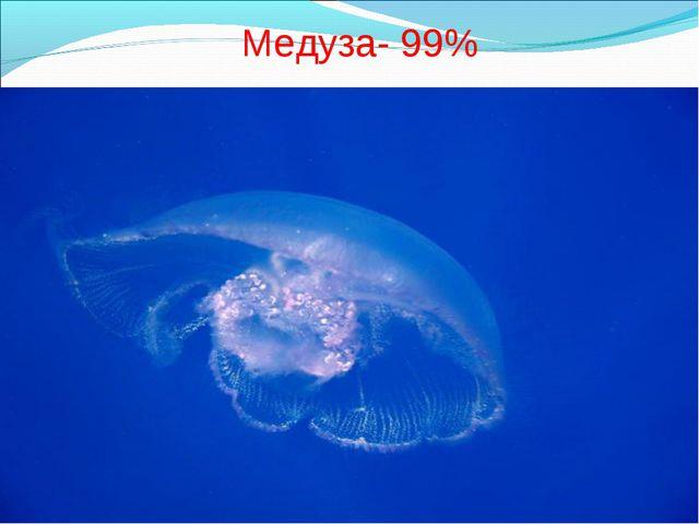 Медуза- 99%