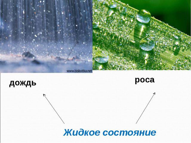 Жидкое состояние дождь роса