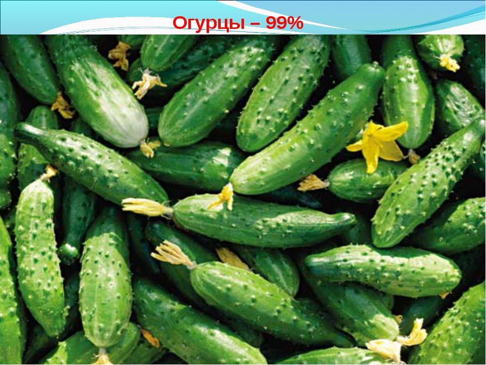 Огурцы – 99%