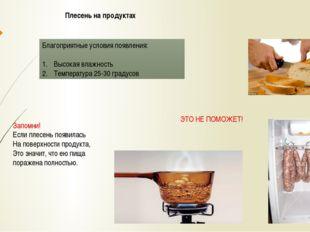 Плесень на продуктах Благоприятные условия появления: Высокая влажность Темпе