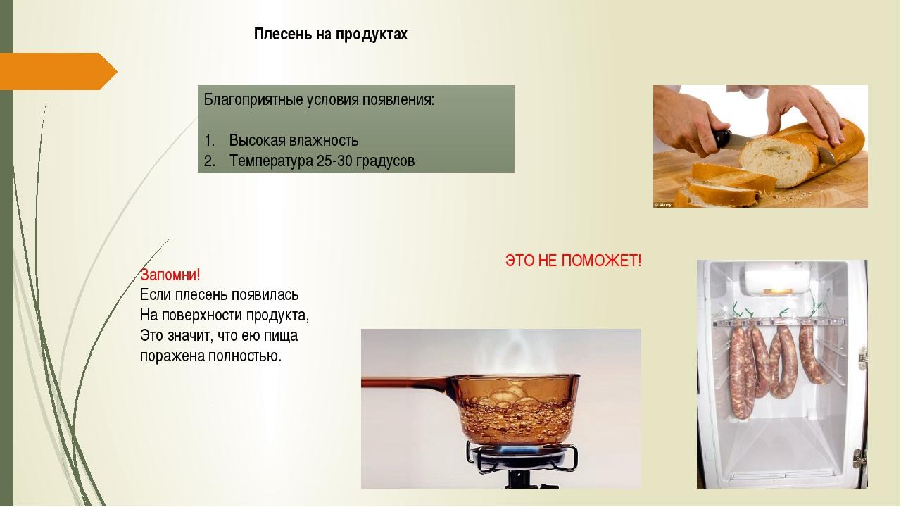 Плесень на продуктах Благоприятные условия появления: Высокая влажность Темпе...