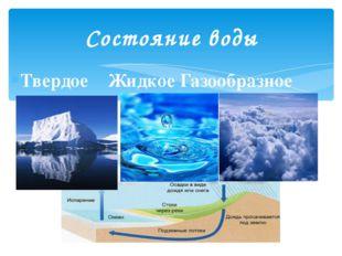 Твердое Жидкое Газообразное Состояние воды