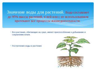 Все растения, обитающие на суше, имеют приспособление к добыванию и сохранени