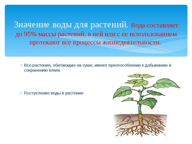 Все растения, обитающие на суше, имеют приспособление к добыванию и сохранени...