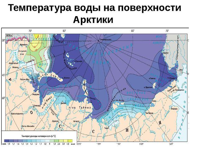 Температура воды на поверхности Арктики