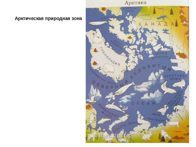 Арктическая природная зона