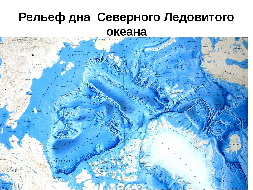 Рельеф дна Северного Ледовитого океана