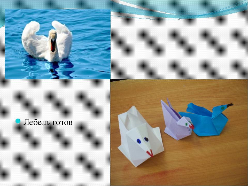 Лебедь готов