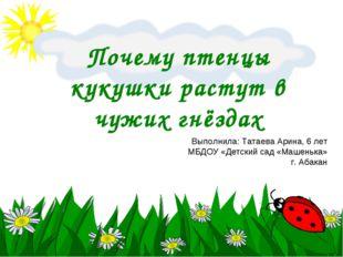 Почему птенцы кукушки растут в чужих гнёздах Выполнила: Татаева Арина, 6 лет