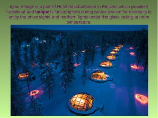 Igloo Village is a part of Hotel Kakslauttanen in Finland, which provides tra
