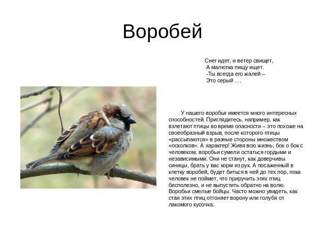 http://ppt4web.ru/images/23/5201/640/img2.jpg