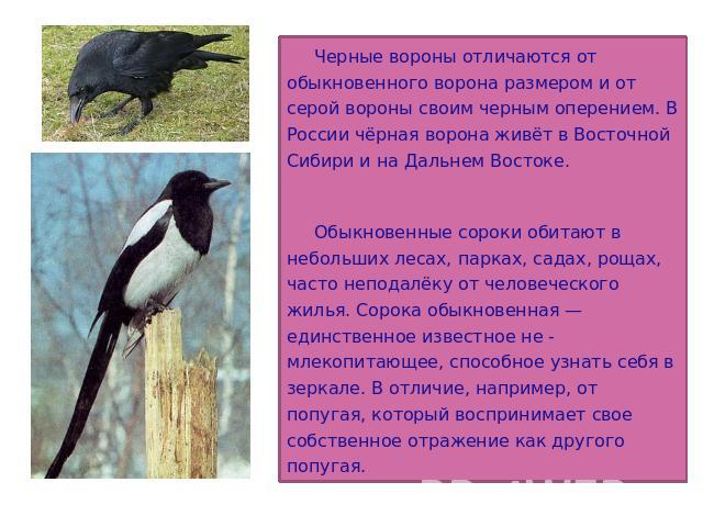 http://ppt4web.ru/images/8/256/640/img4.jpg
