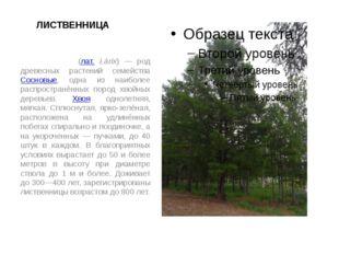 ЛИСТВЕННИЦА Ли́ственница (лат. Lárix) — род древесных растений семейства Сосн