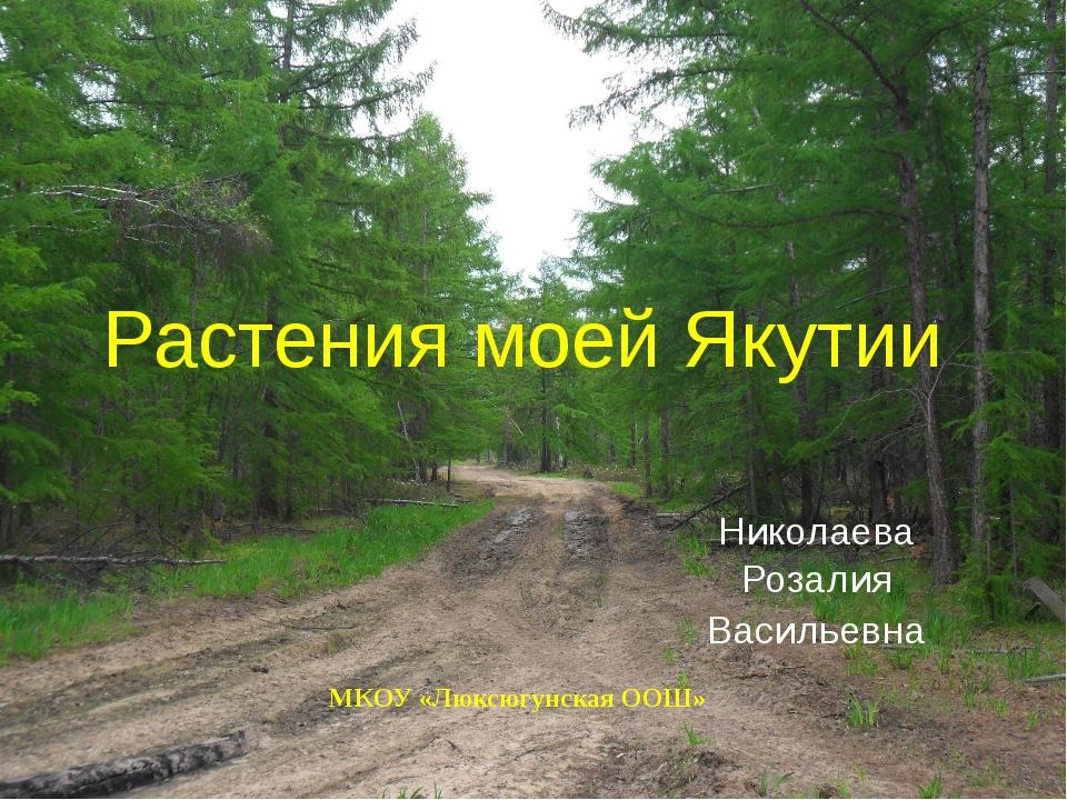Растения моей Якутии Николаева Розалия Васильевна МКОУ «Люксюгунская ООШ»