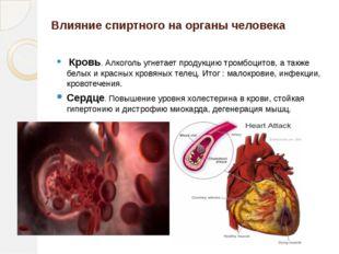 Влияние спиртного на органы человека Кровь. Алкоголь угнетает продукцию тромб