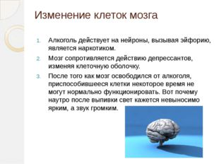 Изменение клеток мозга Алкоголь действует на нейроны, вызывая эйфорию, являет