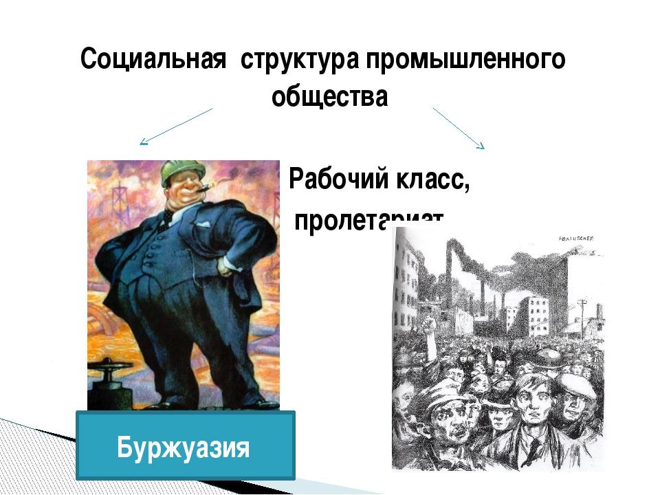 Социальная структура промышленного общества Рабочий класс, пролетариат Буржуа...