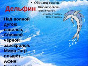 Дельфин  Над волной дугою взвился, Спинкой чёрной заискрился. Мимо Гагр плыв