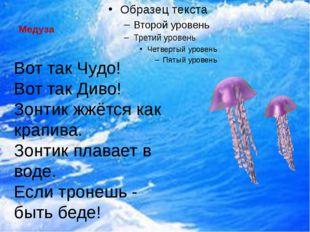 Медуза  Вот так Чудо! Вот так Диво! Зонтик жжётся как крапива. Зонтик плава