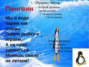 Пингвин Мы в воде парим как птицы, Ловим рыбку и играем, А на суше - удивитьс