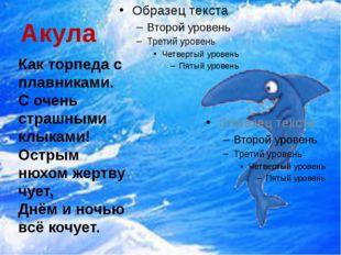 Акула Как торпеда с плавниками. С очень страшными клыками! Острым нюхом жертв