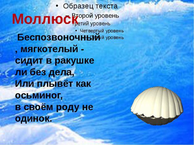 Моллюск Беспозвоночный, мягкотелый - сидит в ракушке ли без дела, Или плывёт...