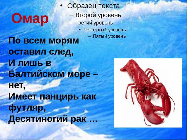 Омар  По всем морям оставил след, И лишь в Балтийском море – нет, Имеет панц...