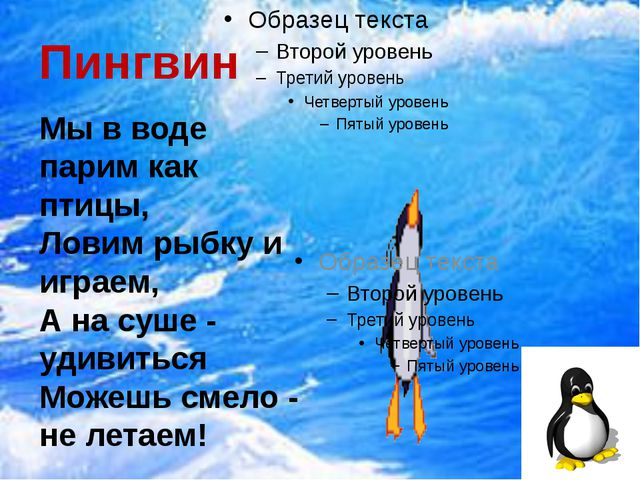 Пингвин Мы в воде парим как птицы, Ловим рыбку и играем, А на суше - удивитьс...