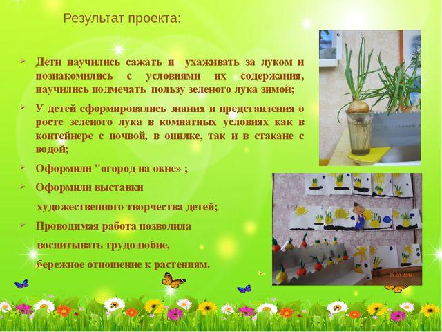 Результат проекта: Дети научились сажать и ухаживать за луком и познакомили...