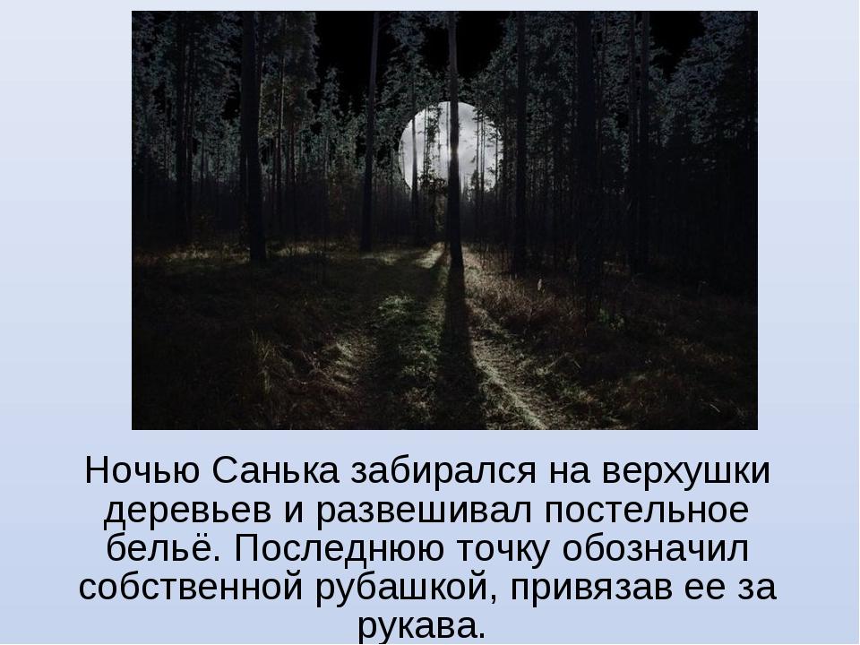 Ночью Санька забирался на верхушки деревьев и развешивал постельное бельё. По...