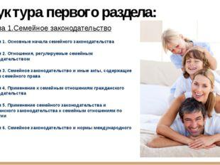 Структура первого раздела: Глава 1.Семейное законодательство Статья 1. Основн