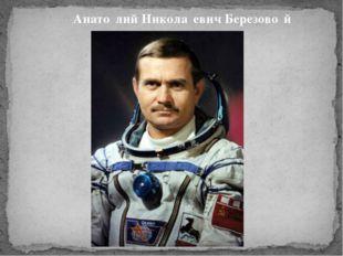 Анато́лий Никола́евич Березово́й