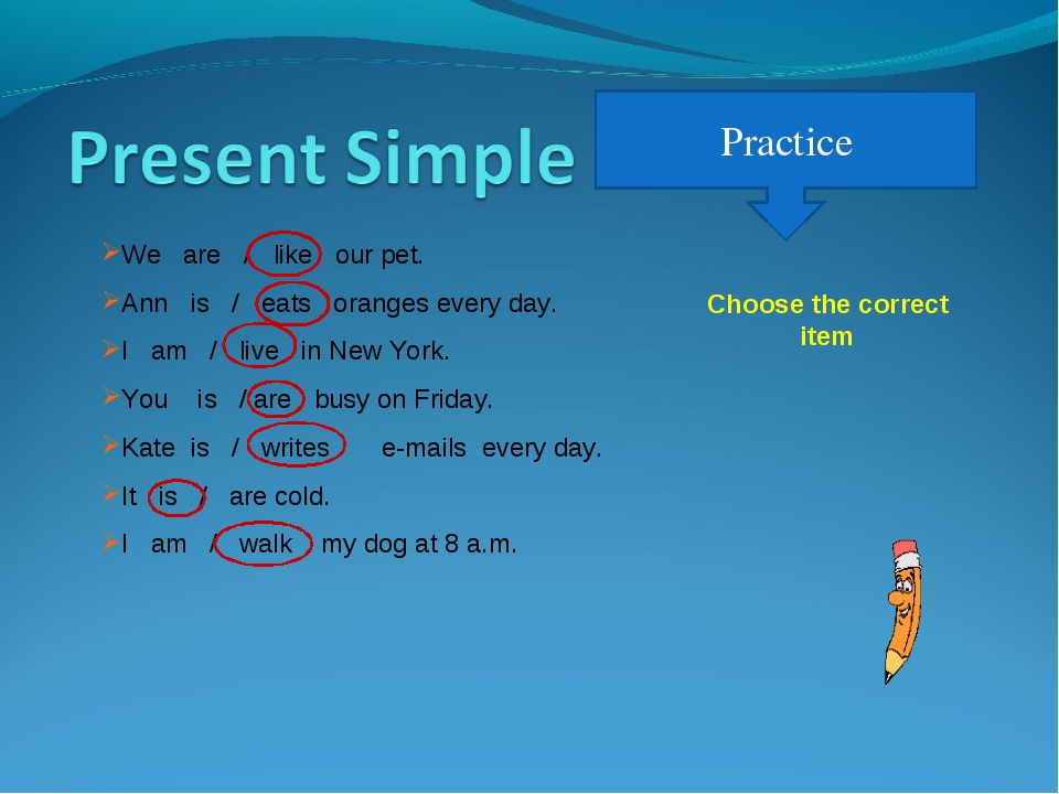 Practice We are / like our pet. Ann is / eats oranges every day. I am / live...