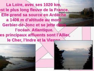 La Loirе, avec ses 1020 km, est le plus long fleuve de la France. Elle prend