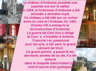 Le château d'Amboise possède une superbe vue sur la vallee. En 1434, la fort