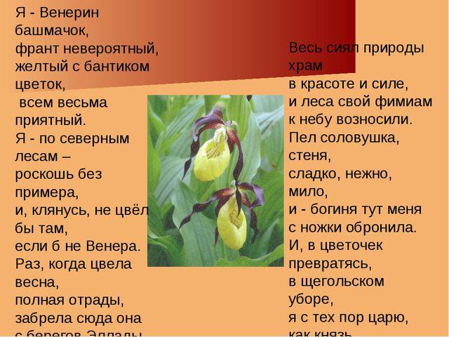 Весь сиял природы храм в красоте и силе, и леса свой фимиам к небу возносили....