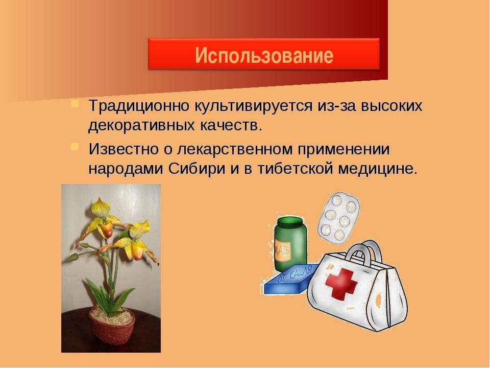 Традиционно культивируется из-за высоких декоративных качеств. Известно о лек...