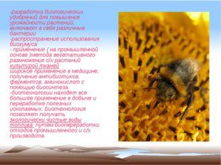 -разработка биологических удобрений для повышения урожайности растений, включ