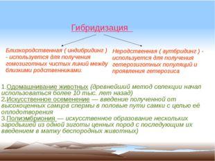 1.Одомашнивание животных (древнейший метод селекции начал использоваться бол