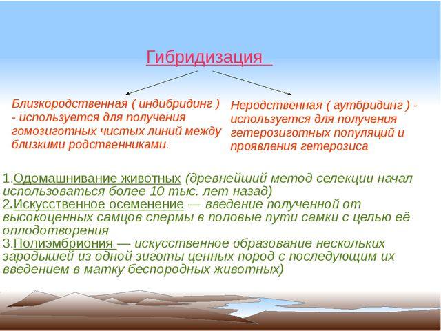 1.Одомашнивание животных (древнейший метод селекции начал использоваться бол...