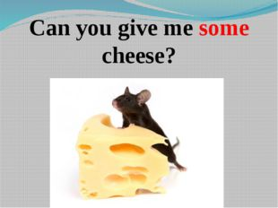 Can you give me some cheese?