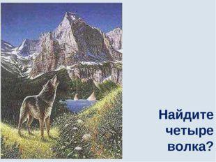Найдите четыре волка?