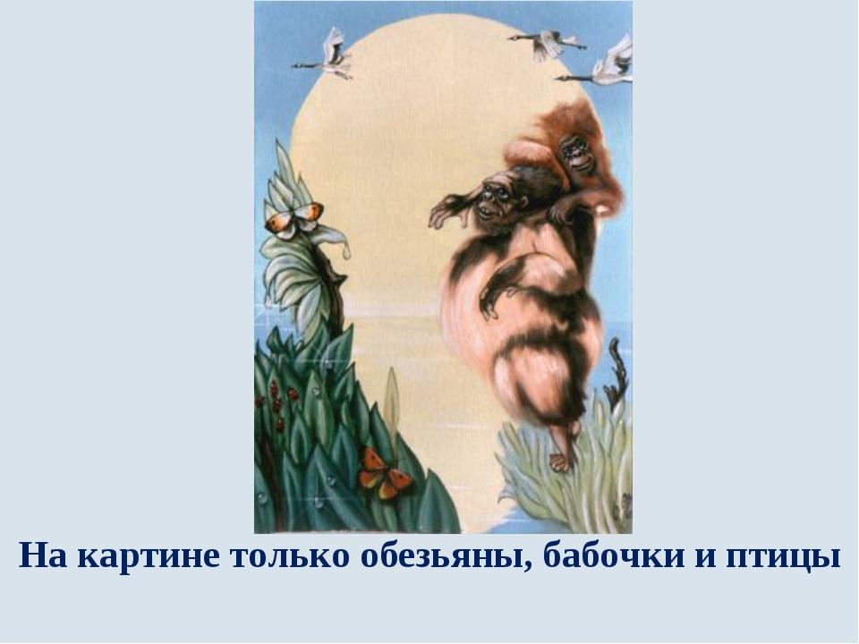 На картине только обезьяны, бабочки и птицы