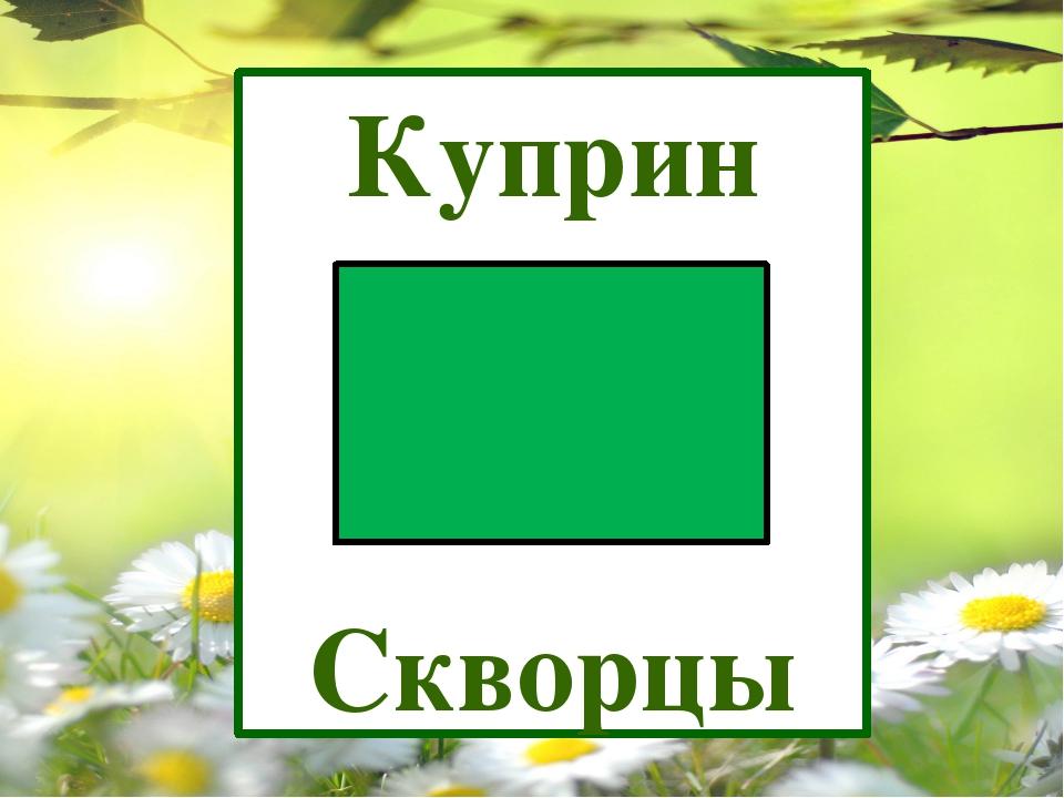 Куприн Скворцы