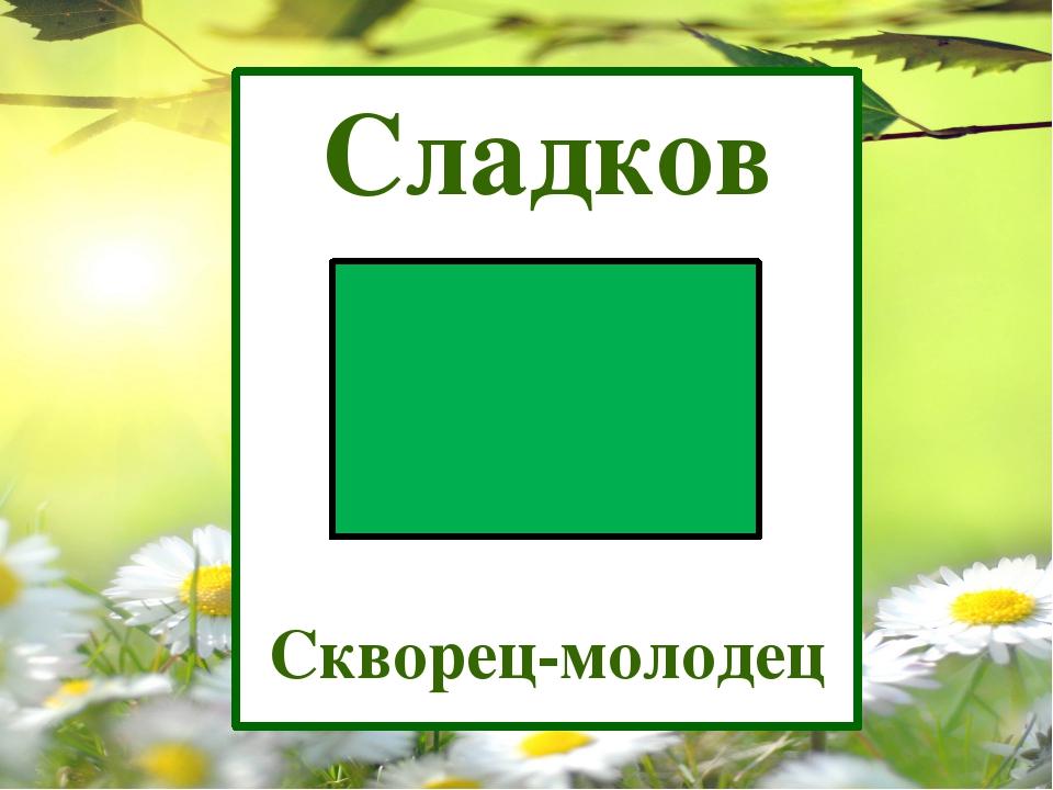 Сладков Скворец-молодец