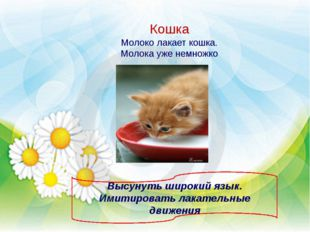 Кошка Молоко лакает кошка. Молока уже немножко Высунуть широкий язык. Имитиро