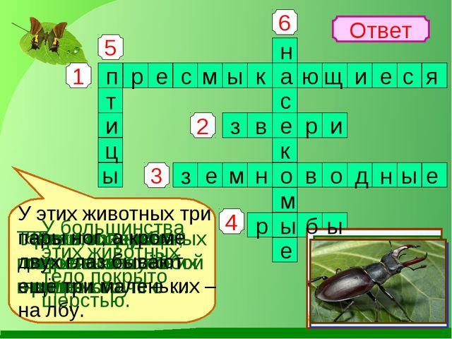 1 4 3 2 5 6 Ответ Змеи, ящерицы, черепахи отно- сятся к группе … У большинств...