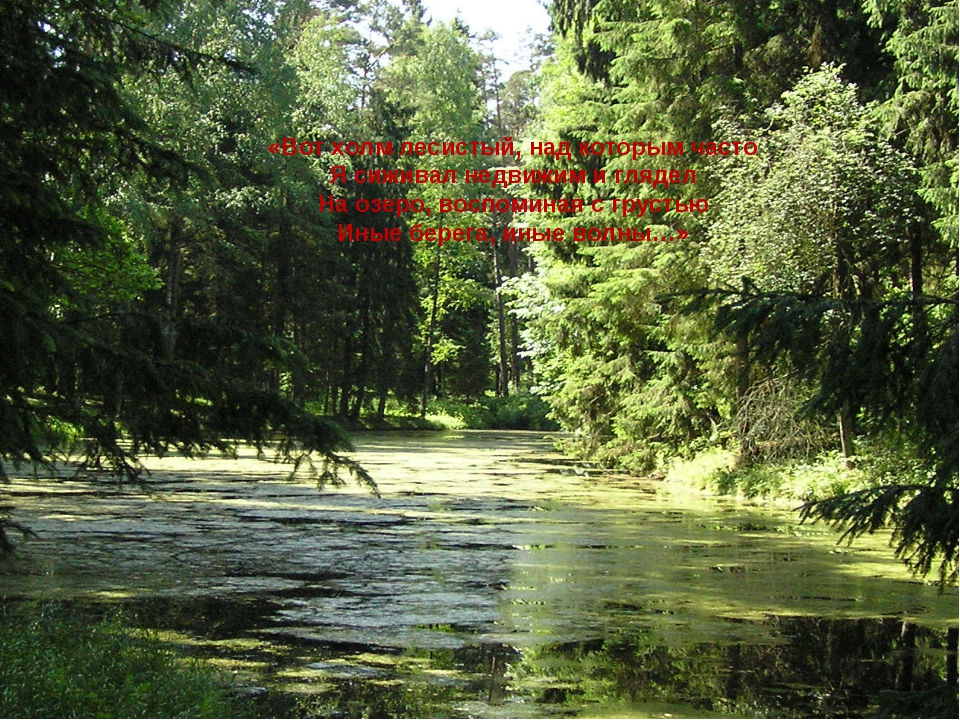 «Вот холм лесистый, над которым часто Я сиживал недвижим и глядел На озеро, в...